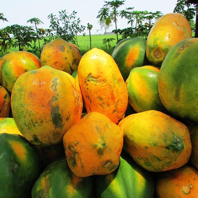 papaya-331273_640